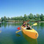 Activitats per fer amb nens a partir de 8 anys a la natura