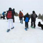 Excursió amb raquetes de neu amb nens a Porté | Cerdanya