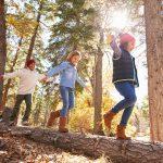 Actividades para niños: 5 ideas para disfrutar de la naturaleza en familia