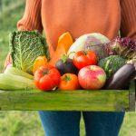 Huerto ecológico: qué es y cómo crear el tuyo