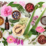 2 plantas medicinales para cultivar en macetas
