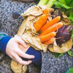 Verdura ecológica: ¿por qué es tan recomendable?