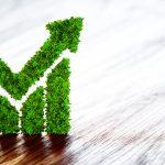 Hotel ecológico: 5 claves para distinguirlo