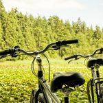 Turisme verd: què és i quins són els seus avantatges?