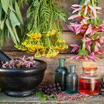 Fitoterapia: qué es y para qué sirve