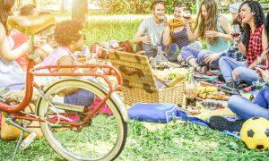 Comida de picnic