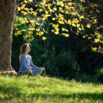 Retiros de meditación en la naturaleza, ¿por qué elegirlos?