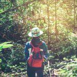 Ecoturismo: qué es, características y beneficios