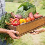 Alimentos ecológicos: qué son, características y beneficios de tomarlos