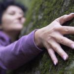 Abrazar un árbol: una terapia sorprendente