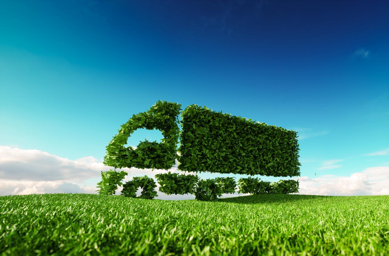 productos ecologicos