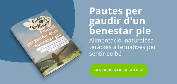 CTA imatge - CAT - Ebook Benestar_Pautes per gaudir d'un benestar ple - azul