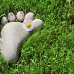 Vida sostenible: por qué es importante conocer tu huella ecológica