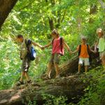 Càmping amb activitats per a nens: alguns exemples