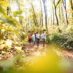 Outdoor training: la nova forma d'entrenar que millora la productivitat