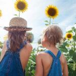 Agroturisme amb nens: granges per a passar-ho molt bé