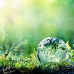Vida ecológica: 10 tips para disfrutarla al máximo y aprovechar sus ventajas