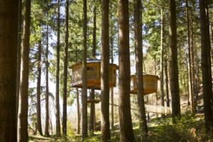 cabañas en los árboles