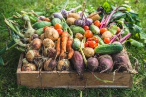 consejos menú sostenible