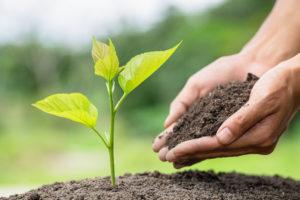 desarrollo sostenible definición