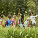 Interpretación ambiental: qué es y cómo practicarla