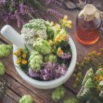 Conoce los beneficios de la medicina natural